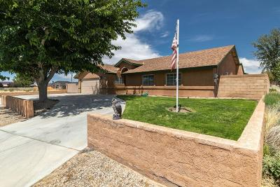 California City Single Family Home For Sale: 21850 101st Street