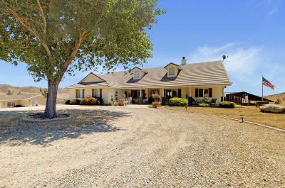 Leona Valley Single Family Home For Sale: 39608 W 86th Street
