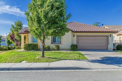 Lancaster Single Family Home For Sale: 6147 Spice Street