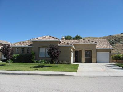 Palmdale Single Family Home For Sale: 4028 Sunkist Street