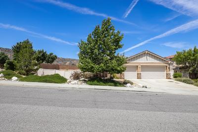 Palmdale Single Family Home For Sale: 41691 Retsina Street