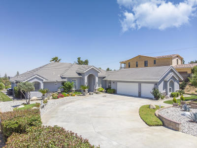 Palmdale Single Family Home For Sale: 41618 Cielo Vista Dr
