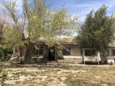 Lake Los Angeles Single Family Home For Sale: 38624 E 152nd Street