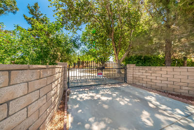 Lancaster Single Family Home For Sale: 42236 W 20th Street