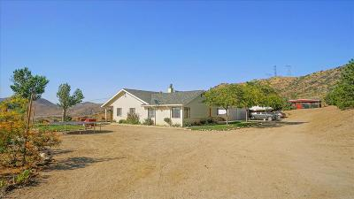 Acton, Canyon Country, Castaic, Saugus, Newhall, Santa Clarita, Stevenson Ranch, Valencia, Agua Dulce Single Family Home For Sale: 32120 Quirk Road