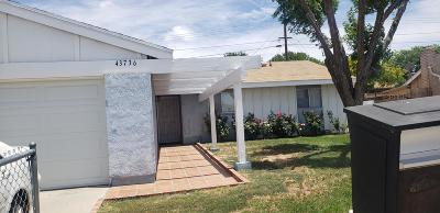 Lancaster Single Family Home For Sale: 43736 Stanridge Avenue