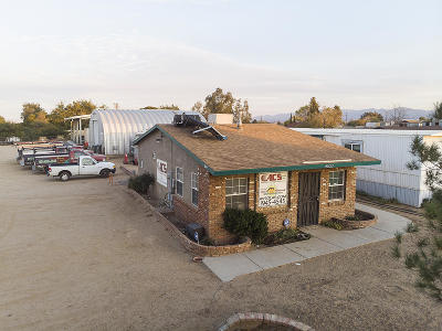 Lancaster Business Opportunity For Sale: 42622 E 7th Street