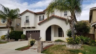 Santa Clarita Single Family Home For Sale: 28684 Placerview Trail