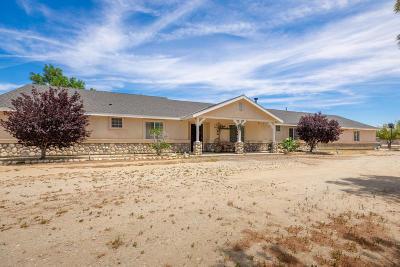 Lancaster Single Family Home For Sale: 8219 W Avenue D10