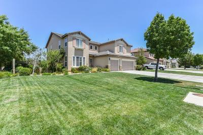 Lancaster Single Family Home For Sale: 3559 Paddock Way