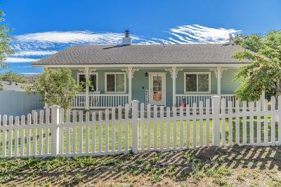 Lake Hughes Single Family Home For Sale: 14641 Sandrock Drive