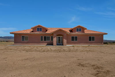 Lancaster Single Family Home For Sale: 25515 Kingsrest Avenue