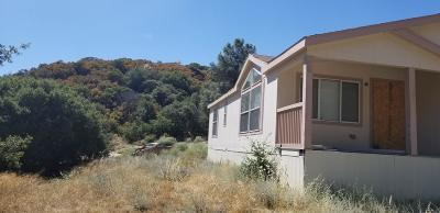 Lake Hughes Single Family Home For Sale: 20129 Pine Canyon Road