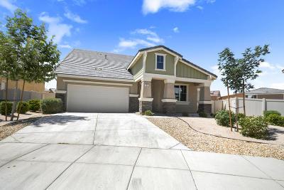 Lancaster Single Family Home For Sale: 4669 Juniper Court