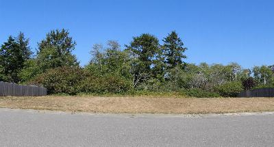 Residential Lots & Land For Sale: 2973 Springer Drive