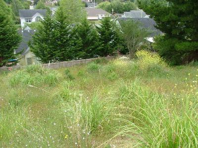 McKinleyville Residential Lots & Land For Sale: 2250 Sunset Ridge Place