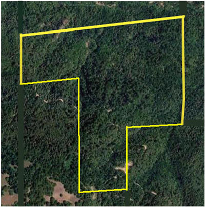 Garberville Residential Lots & Land For Sale: 000bd Reed Mountain Road