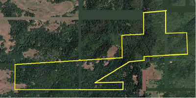 Garberville Residential Lots & Land For Sale: 000db Reed Mountain Road