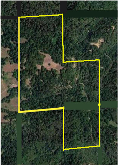 Garberville Residential Lots & Land For Sale: 000lo Reed Mountain Road