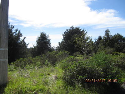 Whitethorn CA Residential Lots & Land For Sale: $25,000