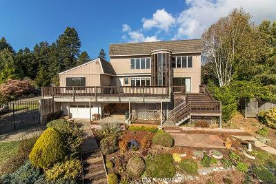 Fortuna Single Family Home For Sale: 1001 Angel Heights Road