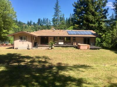 Garberville Single Family Home For Sale: 1025 Camp Kimtu Road