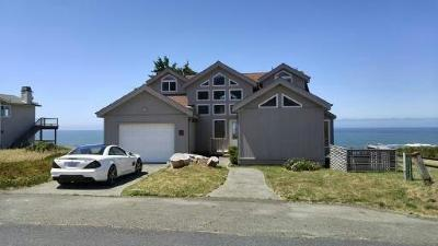 Whitethorn  Single Family Home For Sale: 461 Lower Pacific Drive