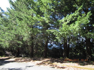 Whitethorn CA Residential Lots & Land For Sale: $50,000