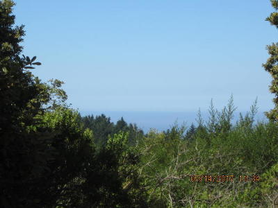 Whitethorn CA Residential Lots & Land For Sale: $45,000