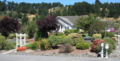Fortuna Single Family Home For Sale: 1975 Rohnerville Road