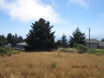 Whitethorn CA Residential Lots & Land For Sale: $27,000