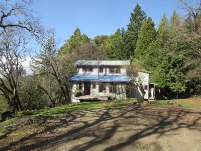 Garberville Single Family Home For Sale: 1451 Ross Road