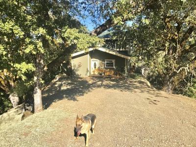 Garberville Single Family Home For Sale: 1285 Bliss Lane