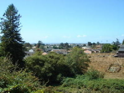 Arcata Residential Lots & Land For Sale: Lot 1&2 Center Street