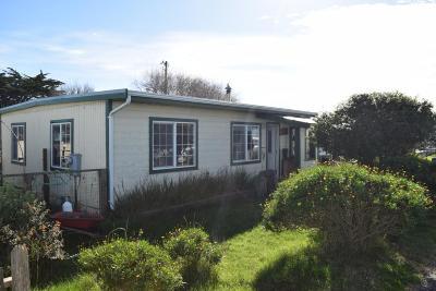 Eureka Single Family Home For Sale: 1671 Buhne Drive