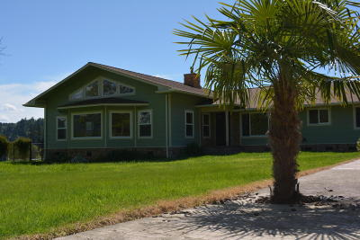 Garberville Single Family Home For Sale: 410 Old Briceland Road