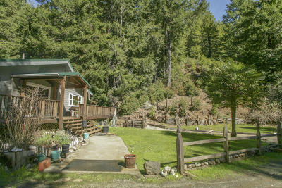 Whitethorn  Single Family Home For Sale: 1100 Stanley Creek Road