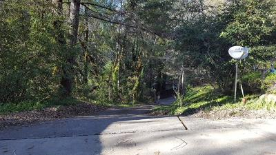 Garberville Single Family Home For Sale: 890 Camp Kimtu Road