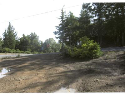 Whitethorn  Residential Lots & Land For Sale: 11 Kelly Road