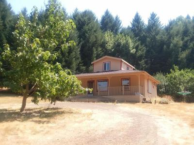 Whitethorn  Single Family Home For Sale: 705 Shelter Cove Road