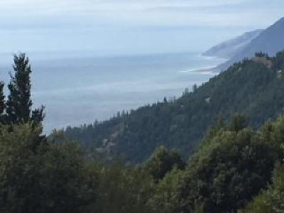Whitethorn CA Residential Lots & Land For Sale: $70,000