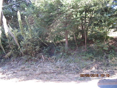Whitethorn CA Residential Lots & Land For Sale: $15,000