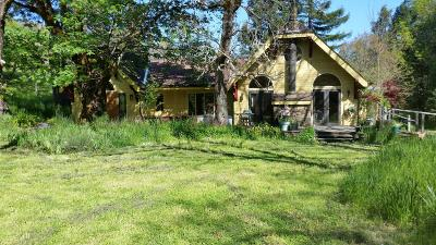 Garberville Single Family Home For Sale: 6525 Briceland Road