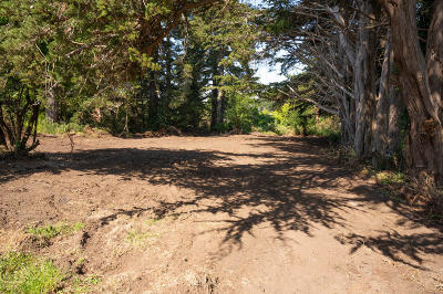 Residential Lots & Land For Sale: 7156 Humboldt Hill Road