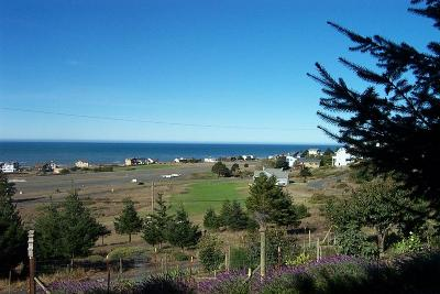 Whitethorn CA Residential Lots & Land For Sale: $35,000