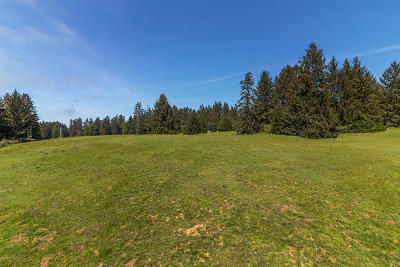 Arcata Residential Lots & Land For Sale: 1255 Aldergrove Road