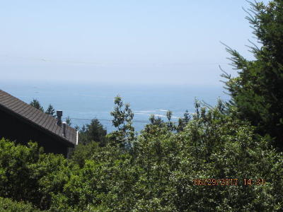 Whitethorn CA Residential Lots & Land For Sale: $19,000