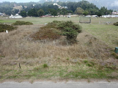 Whitethorn  Residential Lots & Land For Sale: 1130 Lower Pacific Drive
