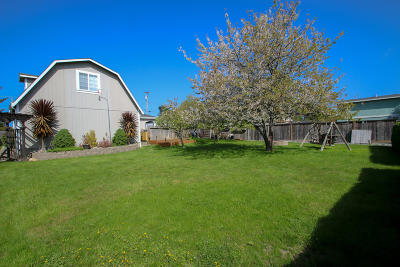 Mckinleyville Single Family Home For Sale: 1745 Mygina Avenue