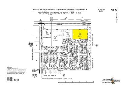 Calexico Commercial Lots & Land For Sale: 1180 E Cole/3.01 Comm Acreage Rd